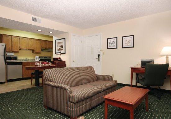Tinton Falls, Νιού Τζέρσεϊ: Studio Suite Living Area & Kitchen