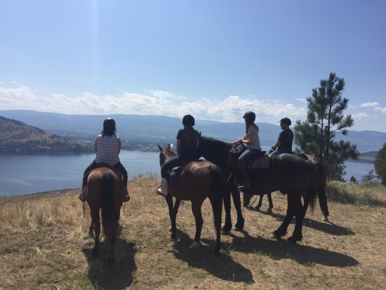 West Kelowna, Canada: Spectacular view after an easy trail ride..