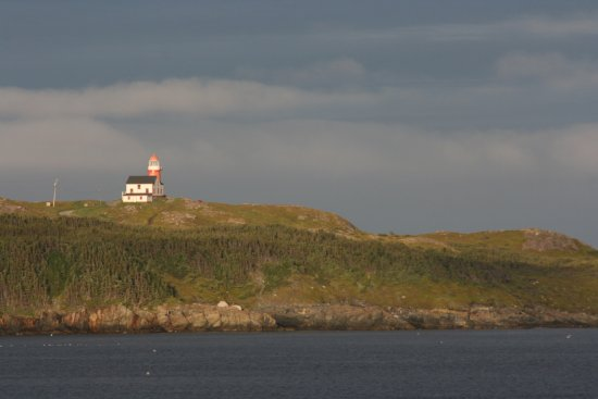 Bars & Pubs in Ferryland