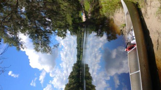 Mayo, FL: 0714171213a_large.jpg