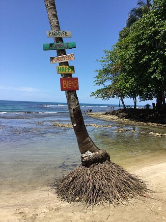 Puerto Viejo Beach: photo1.jpg