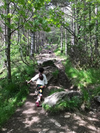 Hike Sukkertoppen the Sugar Top: What an amazing time and hike!!! This is a must do in alesund. See prior postings with full deta