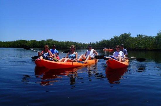 Noleggio All Day Kayak a Tavernier