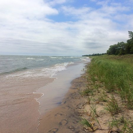 Kohler-Andrae State Park: photo9.jpg
