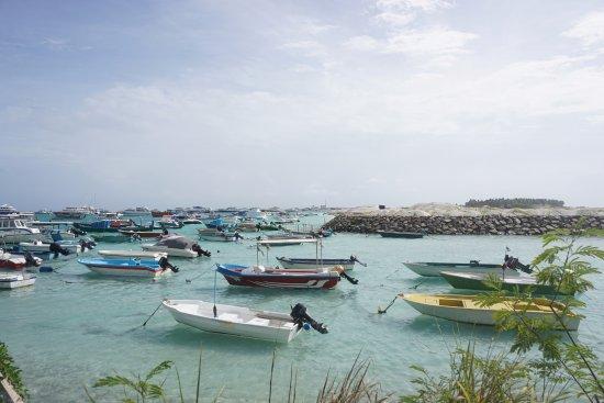Atolón Kaafu: 入り江にはたくさんの船が