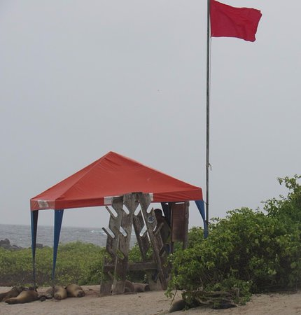 San Cristobal, Ecuador: red flag danger swimming