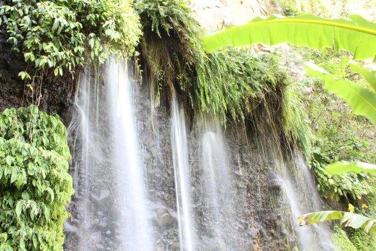 Bukidnon Province, الفلبين: Balisbisan Falls