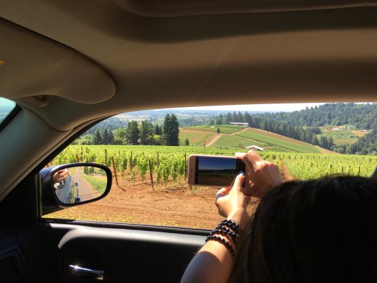 Dundee, OR: B&B is in the heart of Oregon's wine country/vineyards galore