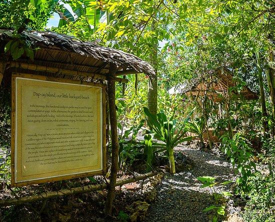 Bahay Kalipay Detox Retreat: The garden pathways at Bahay Kalipay leading  to Meditation and relaxation