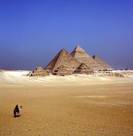 بوكيفي مصر