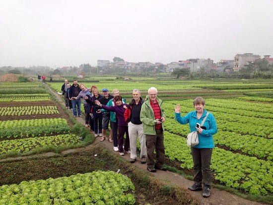 Provincia de Thua Thien-Hue, Vietnam: Visit local people on their vegetable business in Hoian
