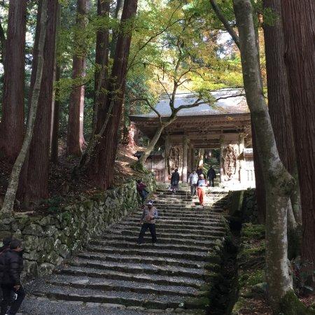 Higashiomi, Japan: photo4.jpg