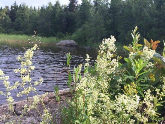 Hujakkala, Finland: photo1.jpg