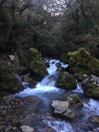Milford, Nova Zelândia: photo5.jpg