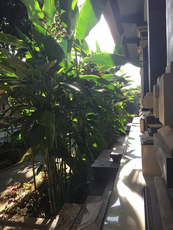 Suparsa's Home Stay: photo1.jpg