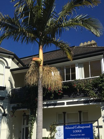 Drummoyne, Australia: コリンウッドストリートから見たホテル