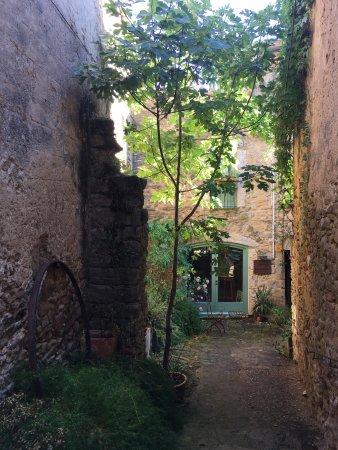 마드레마냐 사진