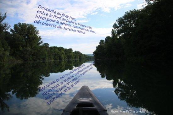Gignac Canoë Kayak: Descendre la partie calme de l'Hérault en canoë amérindien et se croire au Canada ou en Amazonie