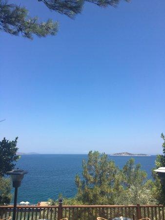Blue Dreams Resort: photo0.jpg