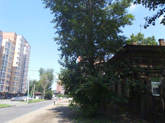 Zakharov's Residence