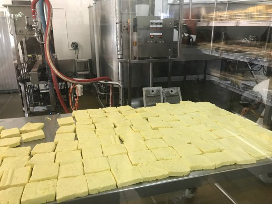Swot analysis of tilba cheese factory