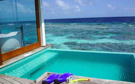 Bilde fra Den nordlige Ari-atollen