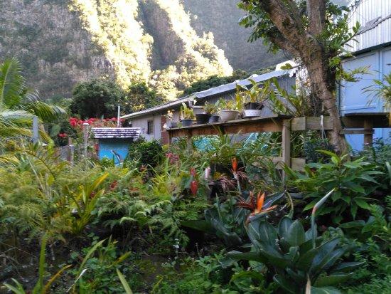 Gite le paille en queue la plaine des cafres restaurant for Jardin 974