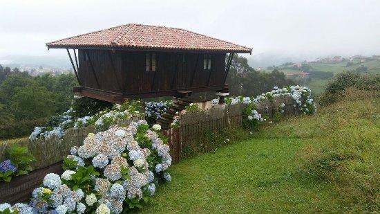 Somado Photo
