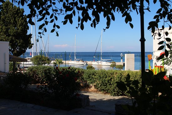 Omonoia Cafe: View from restaurant