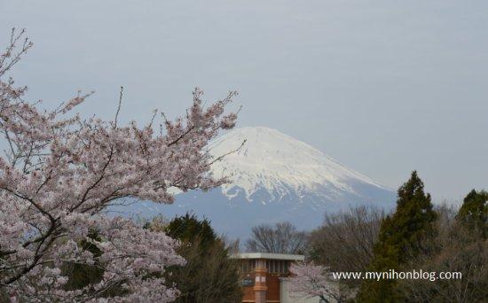 Готемба, Япония: The view of Fuji