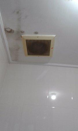 Bali Sandy Cottages : Fuite plafond salle de bain