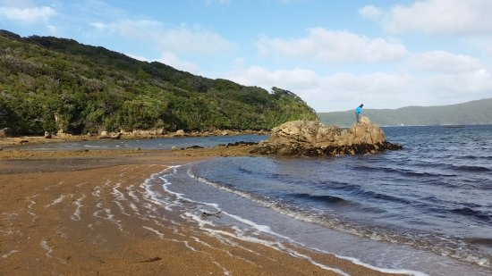 Stewart Island, New Zealand: Beach.