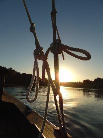 Rochecorbon, France: Le soleil dans le cordage