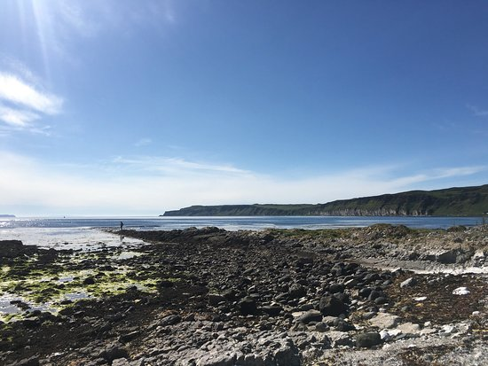 Rathlin Island, UK: Really really beautiful place. Loved it, not the walking though :(