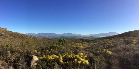 Overberg District, Afrika Selatan: View towards the Hottentots Holland from the top of the mountain opposite the main farm house