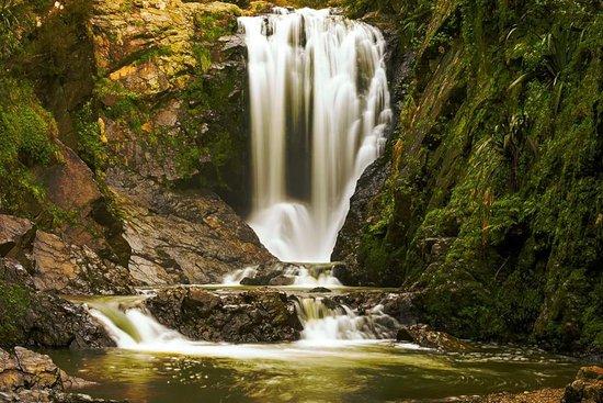 Waipu, นิวซีแลนด์: FB_IMG_1500293751979_large.jpg