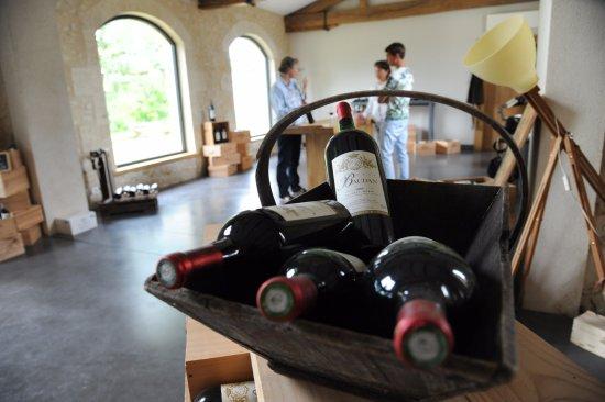 Listrac-Medoc, Frankrig: Идет рассказ о тонкостях виноделия