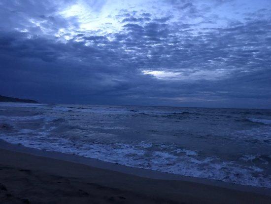 Manzanillo, Costa Rica: Beach at Almonds and Corals