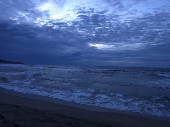 Manzanillo, Kosta Rika: Beach at Almonds and Corals