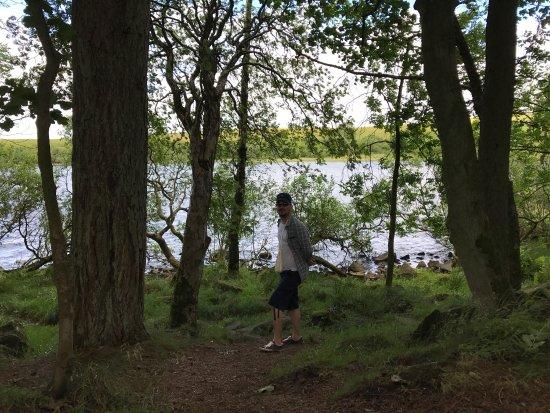 Национальный парк Нортумберленд, UK: photo0.jpg