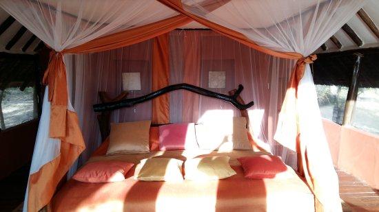 Kikoti Safari Camp: 20170615_173426_large.jpg