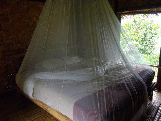 Bamboo Nest de Chiang Rai-billede