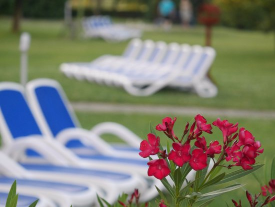 Danubius Health Spa Resort Bük: Napozós-pihenős