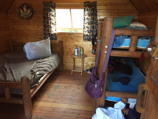 Larkspur, CO: Nice cabin, nice staff!