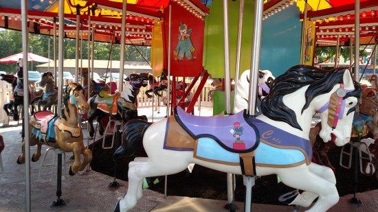 Brooklyn, OH: Carousel
