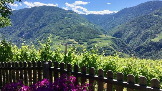 Renon, Italia: Aussicht von der Terrasse