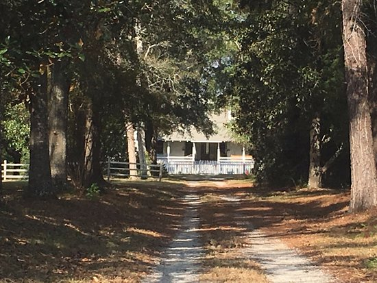 Mobile, AL: Magee Farm: This is all you can see. It is closed and the driveway is private :(