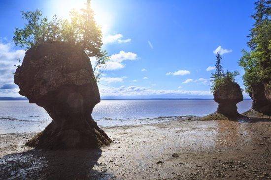 Moncton, Canada: Are you an NBexplorer? / Êtes-vous un NBexplorer?