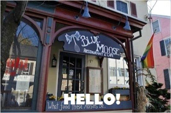Blue Moose Restaurant Cafe New Hope Restaurant Reviews Phone Number