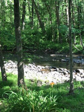 Landscape - Picture of CS Coach House, High Falls - Tripadvisor